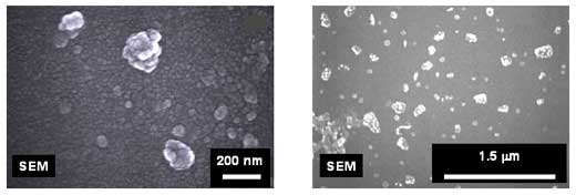 Scanning electron microscope images of FEBEX bentonite colloids